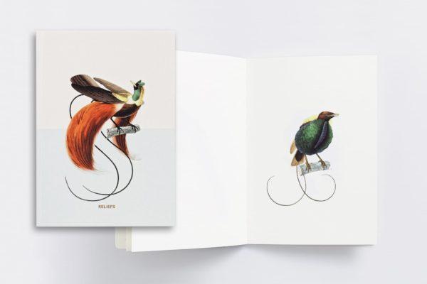 carnet_oiseaux_web