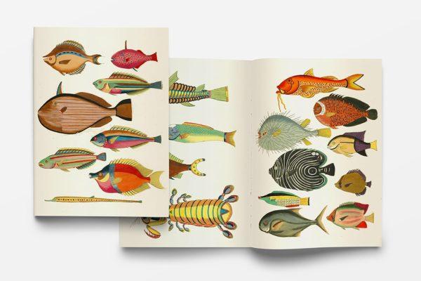 carnet_poissons_web